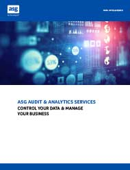 Audit and Analytics Services